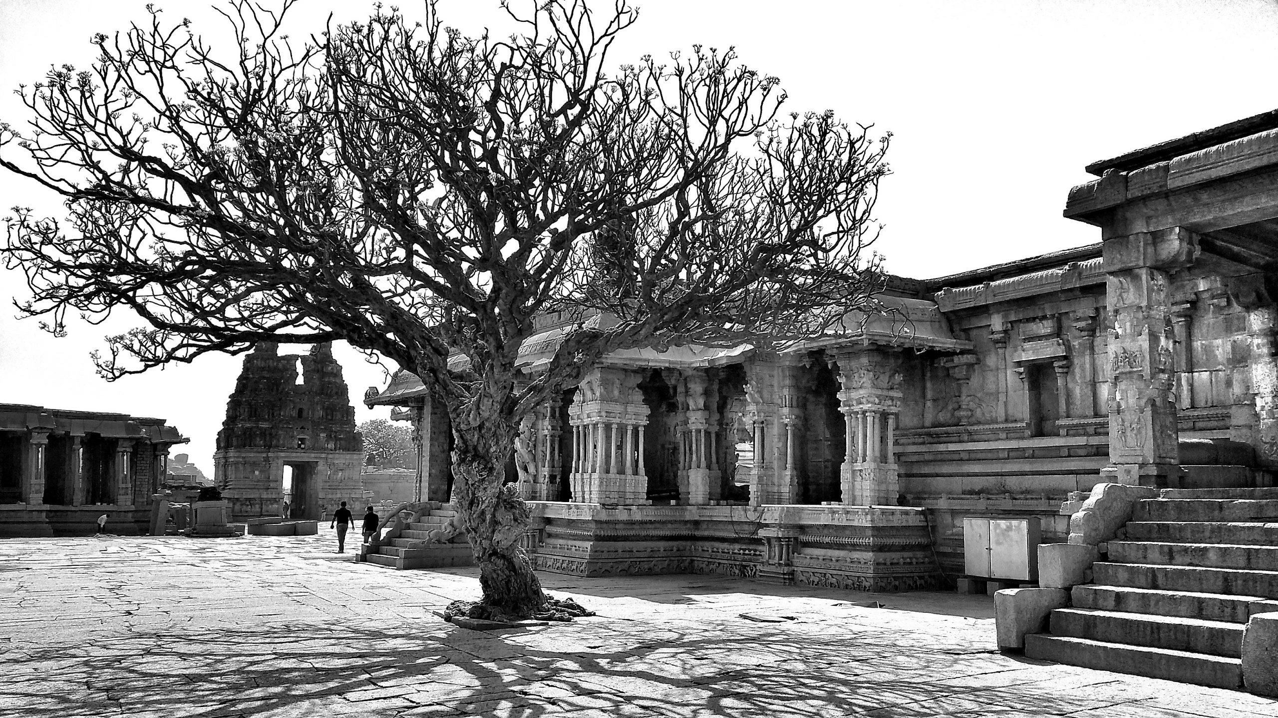HAMPI II, 2021 | Digital print on bright white photo rag Edition of 8 + 2 AP 37.8 x 59 cm in Edition of 8 plus 2 artist's proofs Signed and numbered